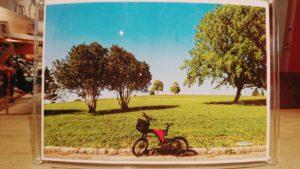 サイクリングお写真③