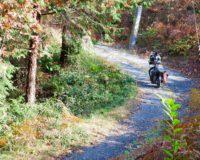 【インプレッション】話題のEカーゴバイク! Tern(ターン)「HSD P9(エイチエスディー)」オーナーレビュー
